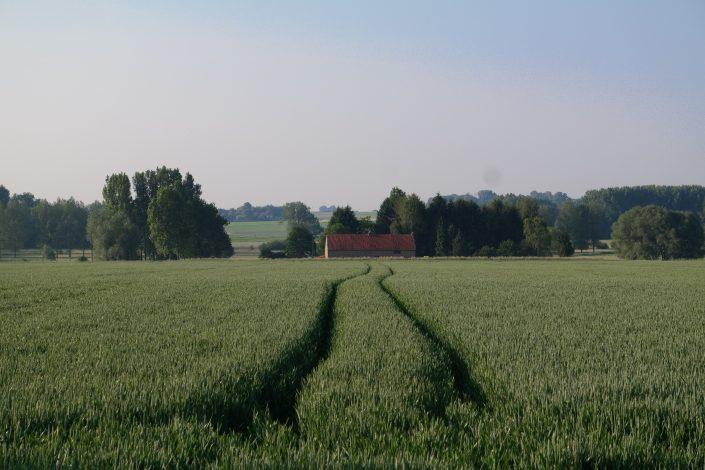 Uitzicht over het veld, niets dan rust en stilte