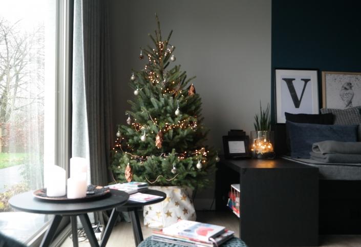 een kerstboom hoort er natuurlijk bij, sfeer verzekerd